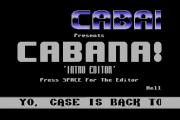 cabanaIntro03a